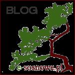 blog e-sosnowe logo