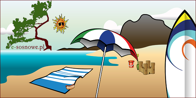 wakacje e-sosnowe.pl